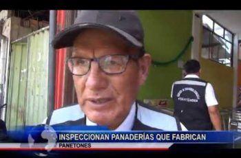 INSPECCIONAN PANADERÍAS QUE FABRICAN PANETONES
