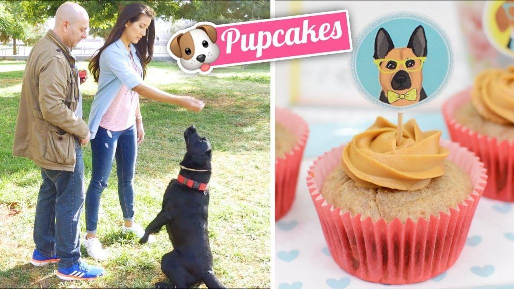 CUPCAKES PARA PERROS | PUPCAKES | Quiero Cupcakes!
