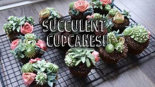 How to Make Succulent Cupcakes! || Ally Bakes