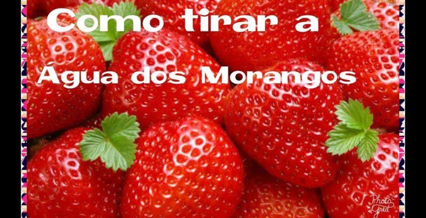 COMO-TIRAR-A-AGUA-DOS-MORANGOS.jpg