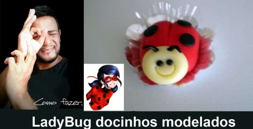 LADY BUG DOCINHOS MODELADOS