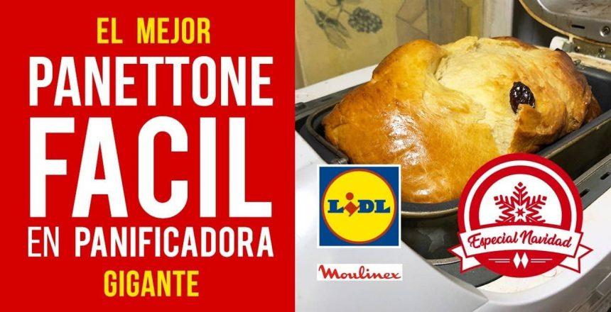 Panettone de Navidad Fácil en Panificadora Moulinex Lidl [RECETA AUTÉNTICA]