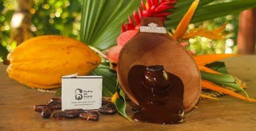 Trufa-de-chocolate-ao-leite-de-Coco-com-Nibs-de-Cacau.jpg