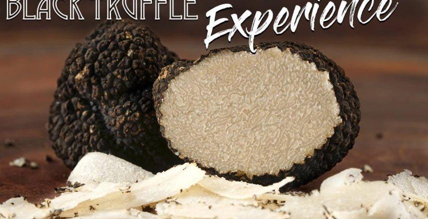 WAGYU-Black-Truffle-CARBONARA-Pasta-WOW-GugaFoods.jpg